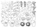 Раскраска картинка овощи и фрукты для детей