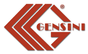 <b>Gensini</b>