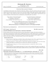 Resume Objective Sales  manager resume summary examples  resume     happytom co
