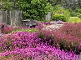 <b>Heath</b> & <b>Heather</b> | American Public Gardens Association
