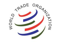 essay on the world trade organisation wto and