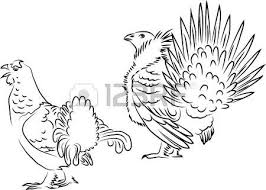 Small Picture 298 Grouse Cliparts Stock Vector And Royalty Free Grouse