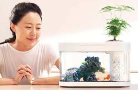 Обзор на <b>аквариум Xiaomi</b> Geometry <b>Fish</b> Tank Aquaponics ...
