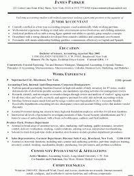 resume design sample accounting volumetrics co junior accountant resume sample doc professional accountant resume template junior junior accountant resume