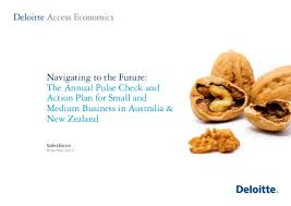 navigating to the future the annual pulse check and action plan for small and medium check small