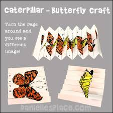 Image result for pictures of new creations butterflies