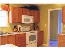 wall color ideas oak: wall color design ideas paint kitchen wall colours with oak cabinets