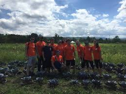 incoming law class finishes orientation week community the college of law s j d class of 2018 wrapped up their week of orientation by completing a community service project where everyone spent several hours at