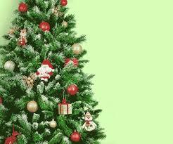 Christmas Tree GIFs | Tenor