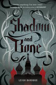 Shadow and Bone (Book 1 of the