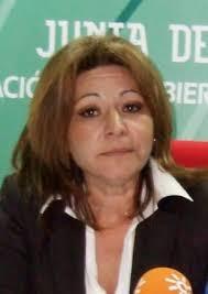 Angelines Ortiz. :: SUR - 13714450