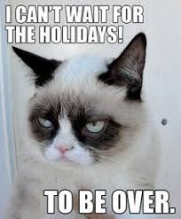 Grumpy Cat Obsession on Pinterest | Grumpy Cat, Grumpy Cat Cakes ... via Relatably.com