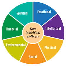 Image result for wellness wheel