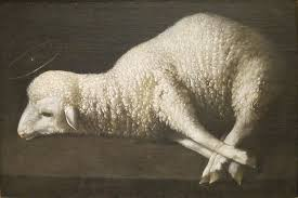 Image result for free pictures of sacrificial lamb in the bible