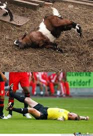 Fainting Goat Referee by lebreu - Meme Center via Relatably.com