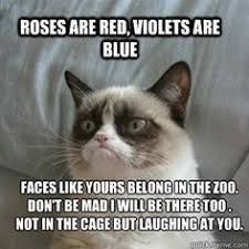 funny memes on Pinterest | Grumpy Cat, Annoying Friends and Grumpy ... via Relatably.com