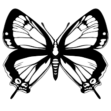 butterfly template printable clipart best printable admission ticket template
