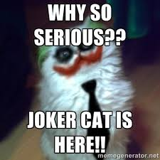 Why so serious?? Joker Cat is here!! - JokerCat | Meme Generator via Relatably.com
