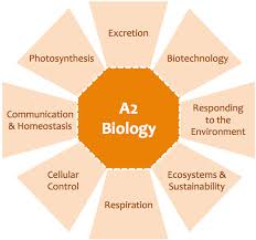 GCSE Biology Coursework   HELP    The Student Room Expert School