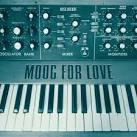 Moog for Love