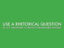 using rhetorical questions in essays thedrudgereort web fc com using rhetorical questions in essays