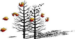 Znalezione obrazy dla zapytania gify ruchome - jesień