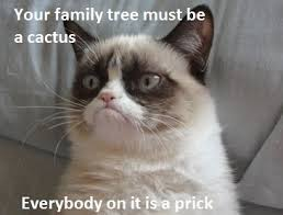 prickly | Grumpy cat | Pinterest via Relatably.com