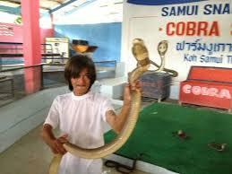 Snake farm Koh Samui