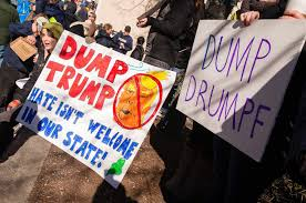 Image result for anti trump rally