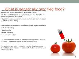 gmo essayand increase the use of gmo foods affect our diet   very little