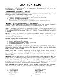 General resume samples objective