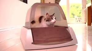 Автоматический самоочищающийся <b>туалет</b> для кошек <b>PetSafe</b> ...