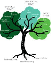 writing from the tree of life    leavingcertenglish nettree diagram indd
