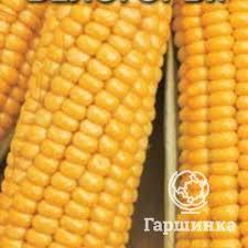 Купить/заказать <b>Семена Кукуруза Лакомка Белогорья</b> сахарная 5 ...