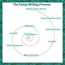 do animals have rights essay  aquarium pula free do animals have rights essay   example essays