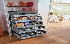 cabinet roll shelves