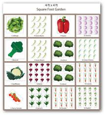 Small Picture Beautiful Planning A Vegetable Garden Planning A Vegetable Garden