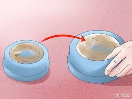 get rid of ants step 20 version 2jpg adi nag sleeping porch