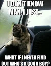 Funniest-Memes-ever-075.jpg via Relatably.com