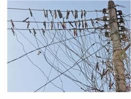 Resultat d'imatges de fraude corriente eléctrica