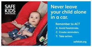 Image result for preventing heatstroke in cars