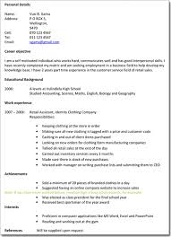 Writing Tips IT Professional Resume             Resume
