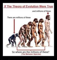 Faithful Memes on Pinterest | Evolution, Psalms and 1 Peter via Relatably.com