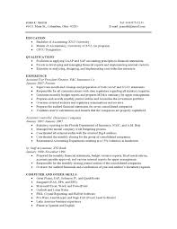 sample combination resumes resume com