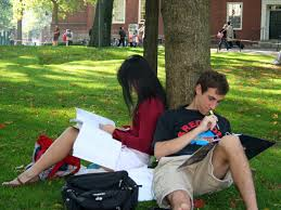 How to answer Harvard Business School admissions essay   Business     Business Insider