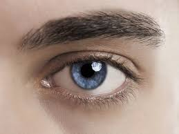 <b>Eyes Reveal</b> Sexual Orientation | Pupils & Attraction | Live Science
