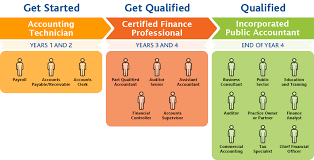 career paths institute of incorporated public accountants iipa career paths
