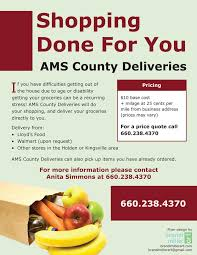 grocery delivery flyer by strange business class project grocery delivery flyer by strange 1
