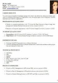 cv format for accountant sample template ofbeautiful curriculum    cv format for accountant sample template ofbeautiful curriculum vitae   resume format   career objective job