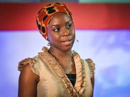 introductory essay  media and journalism  ted studies  read  chimamanda ngozi adichie